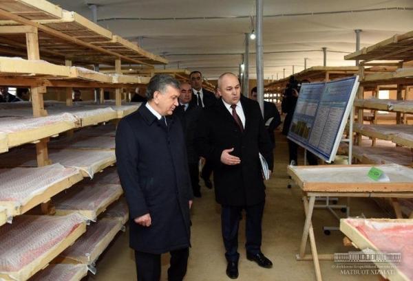 Президент инновацион пиллахона билан танишди
