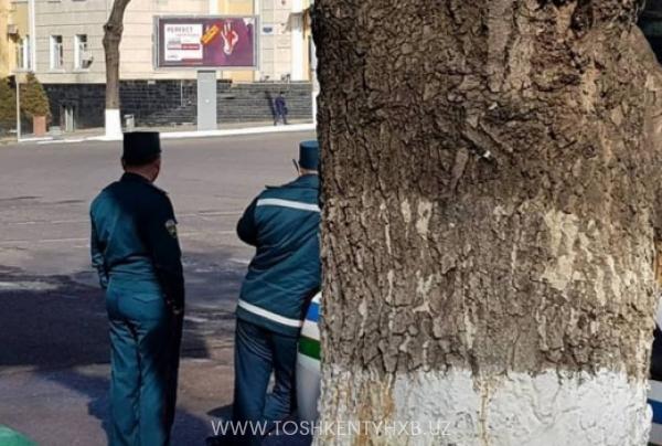 Инспекторам ДПС запретили прятаться от водителей за деревьями