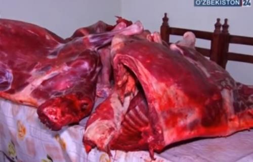 И самса, и шашлык: в Фергане был налажен канал поставки ослиного мяса в заведения общепита (видео)