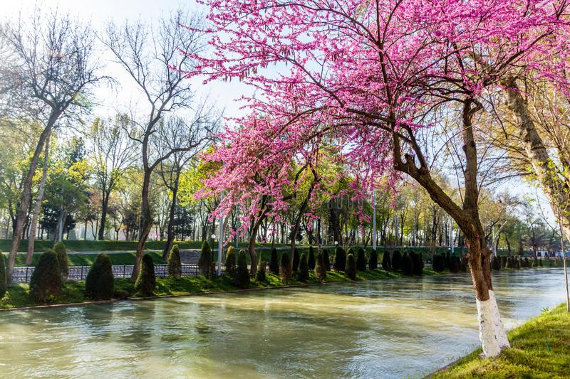 Ташкент вошел в топ-10 городов для весенних путешествий по СНГ