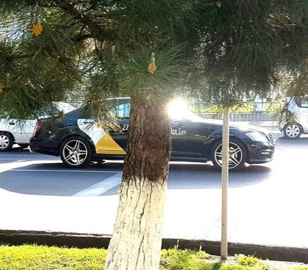 Конкуренты в шоке: в Ташкенте появилось «Яндекс Такси»