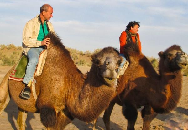 В пустыню Кызылкум  туристов привлекут верблюды