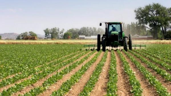 Фермеры и дехкане Узбекистана обрели вышестоящую организацию с широкими полномочиями