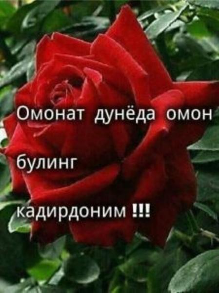 Ҳиёнат ўлимдан қаттиқ