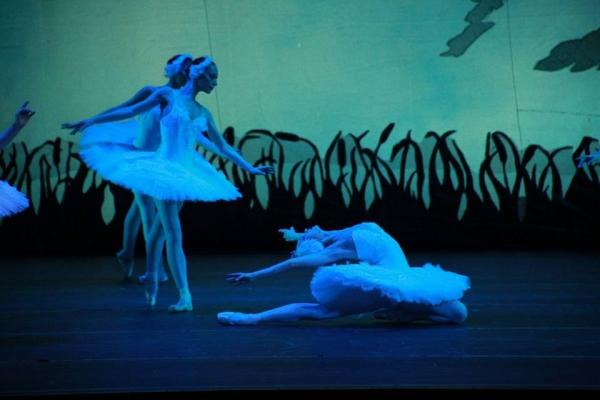 Лебединая песнь I-го «Palette of Ballet»