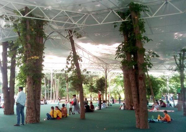 Ташкентский Ботанический, или Как аукнутся пикники на обочине