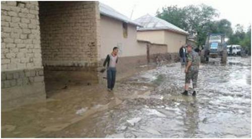 Селевые потоки затопили пять махаллей в Кашкадарьинской области