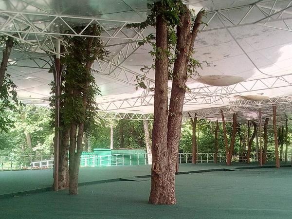 Ботанический сад – не для развлечений