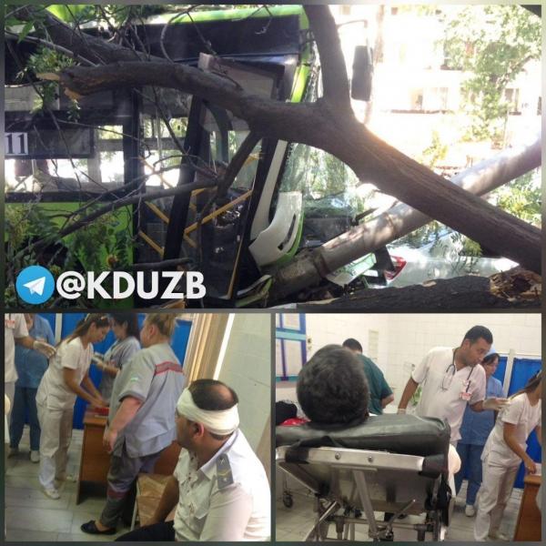 В Ташкенте городской пассажирский автобус врезался в дерево. Более 10 человек пострадали