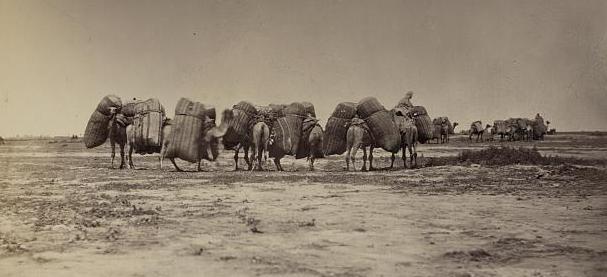 Есть только миг… Необыкновенные приключения американца в Туркестане. Часть III