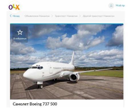 Самолет не надо? На популярном сервисе появилось объявление о продаже частного Боинга-737 (обновлено)