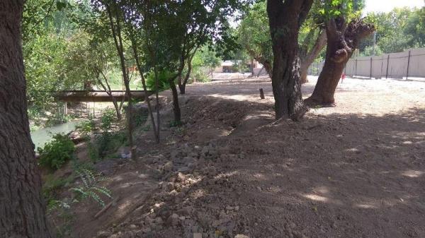 На массиве Югнаки под предлогом строительства автостоянки вырубили целую рощу деревьев