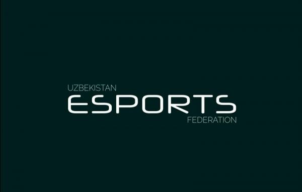 В Узбекистане создали федерацию электронного спорта
