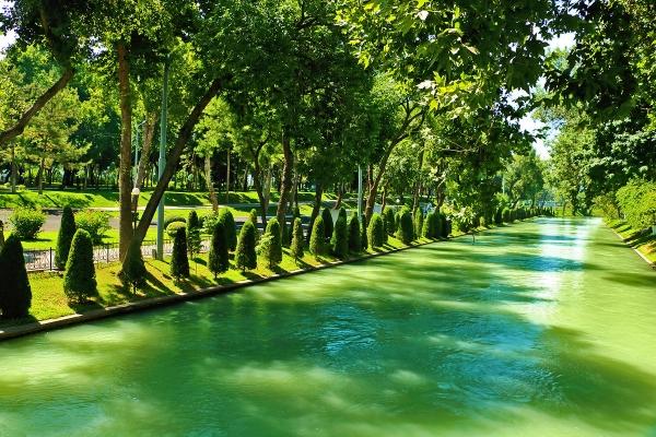 Вдоль каналов Ташкента будут созданы зоны отдыха