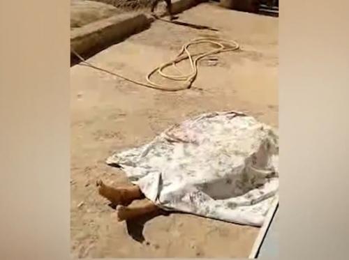 Жестокое убийство в Янгиюле: муж убил жену в день празднования Курбан хайита