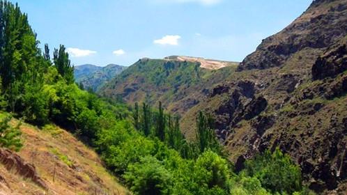 Лесная служба США помогает узбекским коллегам с развитием парковой зоны в заповеднике Сукок