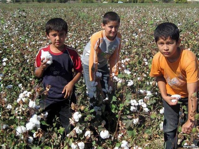 В Узбекистане отмечается умеренное улучшение ситуации с детским трудом