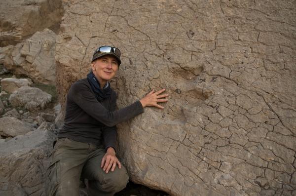 На юге Узбекистана обнаружены следы динозавров