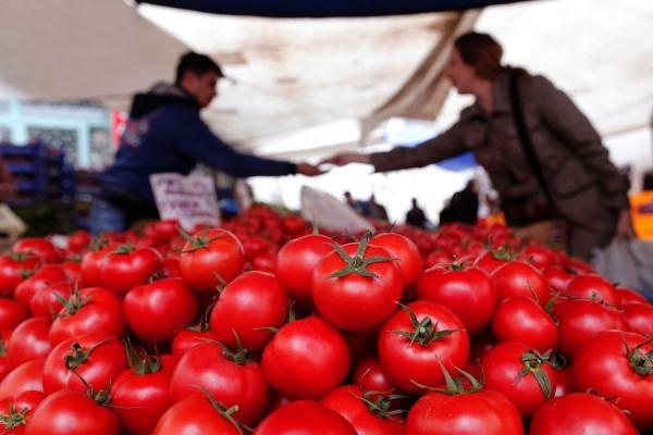 Экспорт томатов из Узбекистана в Россию увеличился в три раза