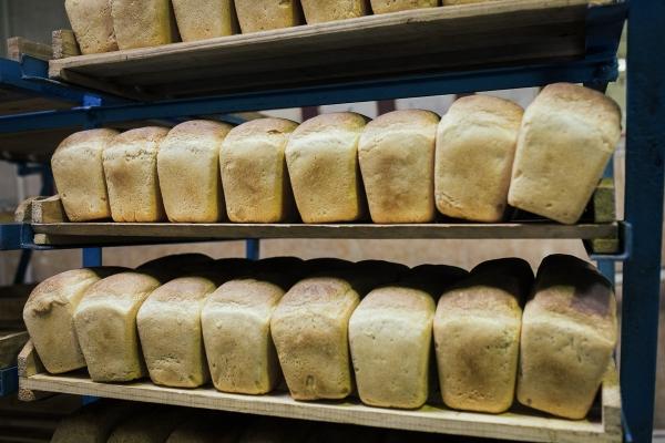 Государство повышает цены на хлеб и муку: малообеспеченным семьям назначена компенсация и увеличены пособия