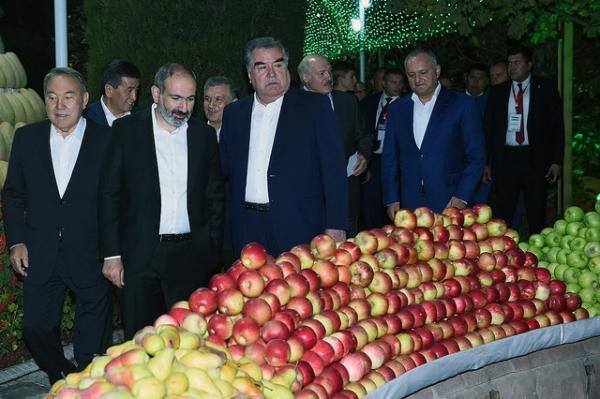 Вечер дружбы в резиденции Эмомали Рахмона: президенты СНГ вышли на вечернюю прогулку (фото, видео)