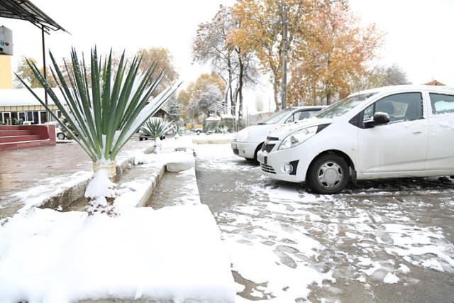 Во всех регионах Узбекистана ожидается резкое похолодание и снег