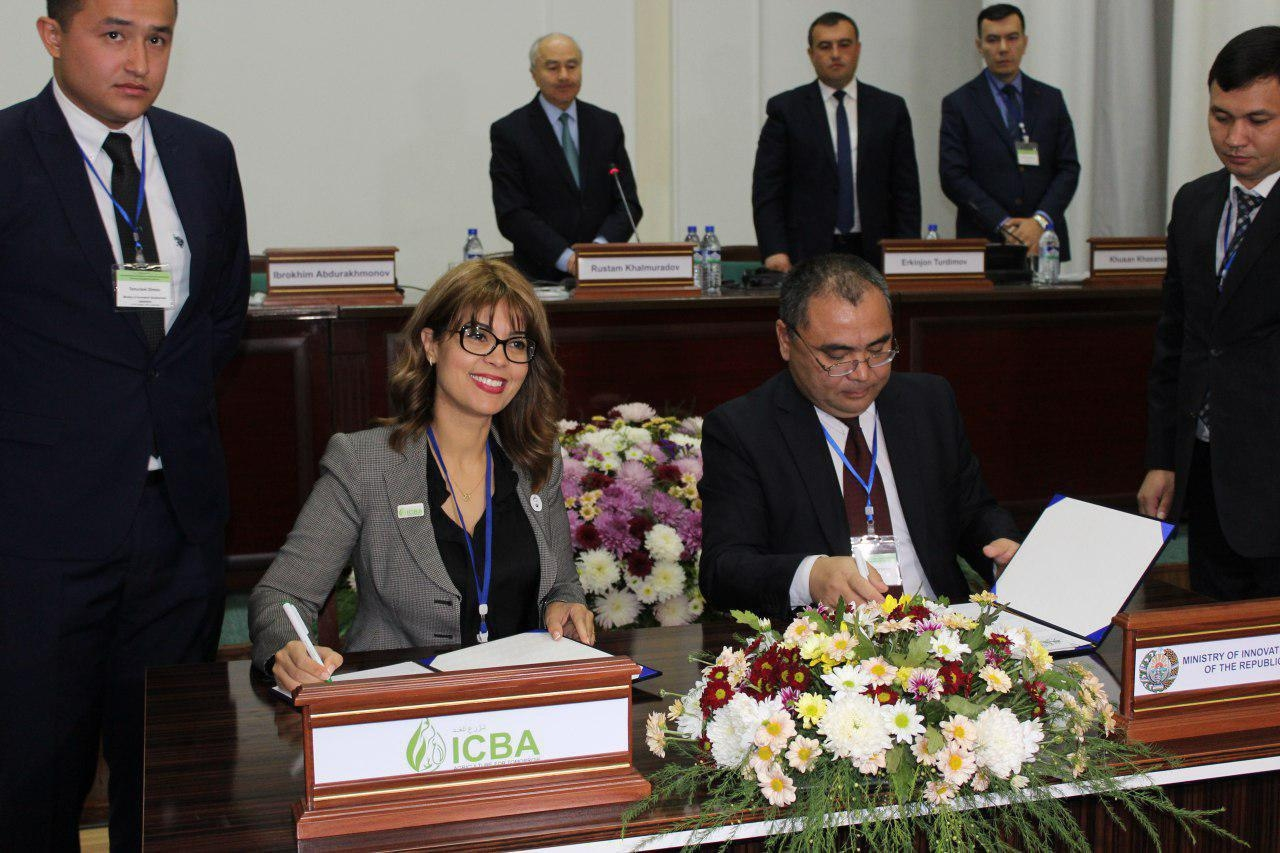 В Каракалпакстане будет создан Международный инновационный центр Приаралья при Президенте Республики Узбекистан