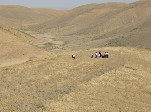 Как сохранить пастбища на неорошаемых землях при меняющемся климате?