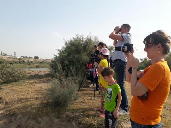 Стали известны результаты осенних наблюдений за птицами в Узбекистане