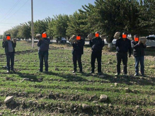 Теперь с камнями: в социальных сетях появился новый снимок наказанных фермеров