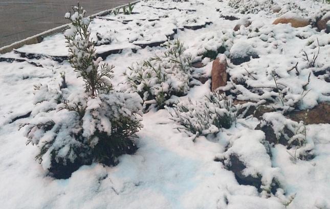 Синоптики прогнозируют похолодание и снег во всех регионах Узбекистана