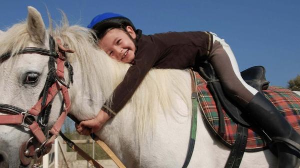 В школах для детей с ограниченными возможностями появятся лошади для иппотерапии
