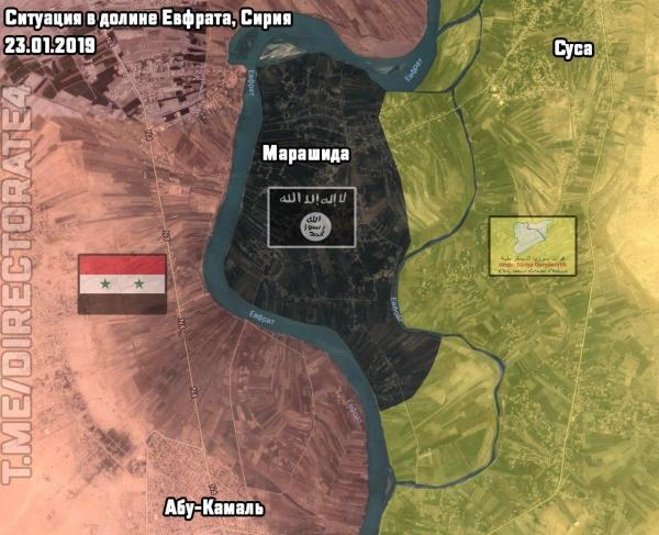 В Сирии начался штурм последнего оплота ИГИЛ
