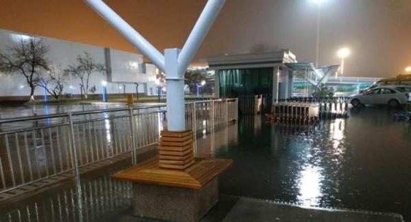 Тошкент аэропорти ҳудудини сув босди