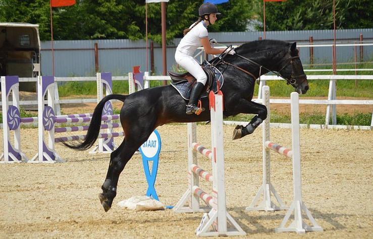 В Узбекистане откроются  конно-спортивные школы