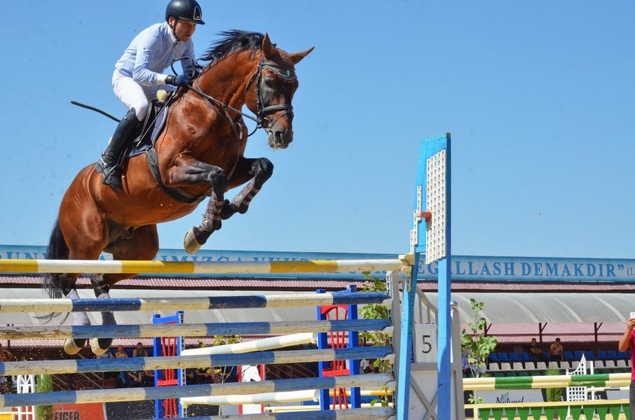 Разведение коней и развитие конного спорта доверят «Узбекистон темир йуллари»