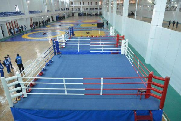 Стало известно, по каким направлениям будут обучать в Самаркандском филиале Российского университета физкультуры, молодёжи и туризма