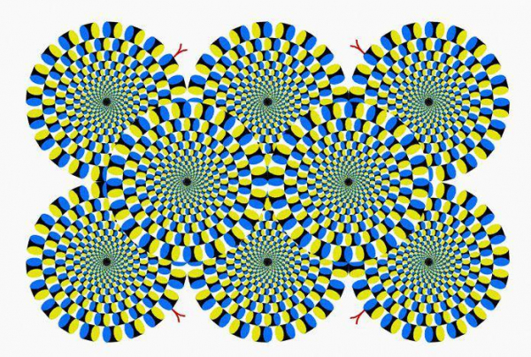 Эту иллюзию изобрел японский психиатр Акиоши Китаока. Иллюзия неподвижна для спокойных, уравновешенных и отдохнувших людей