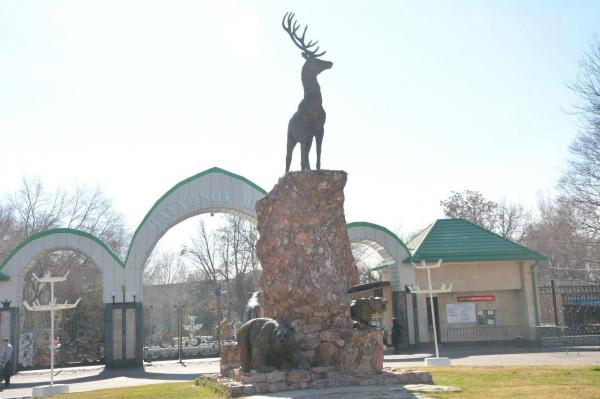 Ташкентский зоопарк расширяет международное сотрудничество
