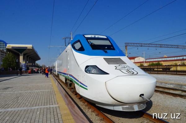 В поездах на туристских направлениях начнут работать инспекторы по профилактике