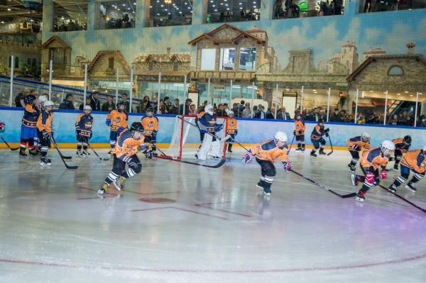 Хоккей на  Родине плова