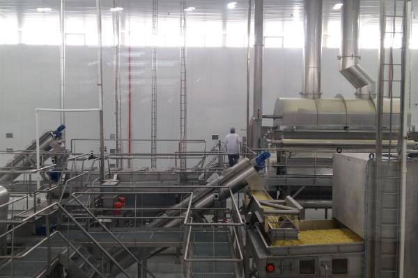 Тонны фри и пюре: в Ташкенте начал работу единственный в Центральной Азии завод по переработке картофеля (видео)