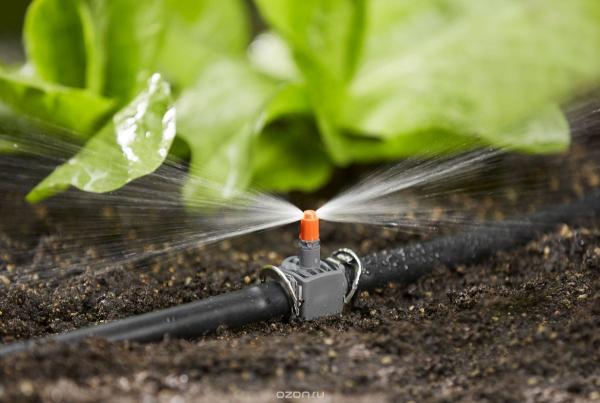 Фермеры смогут получить государственные субсидии на внедрение водосберегающих технологий