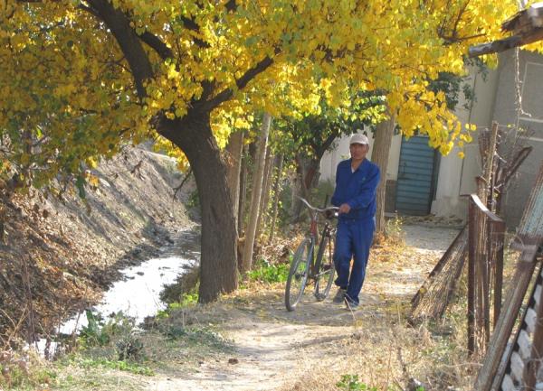 Как обеспечить водой «клочковое» земледелие и иные запросы на воду?