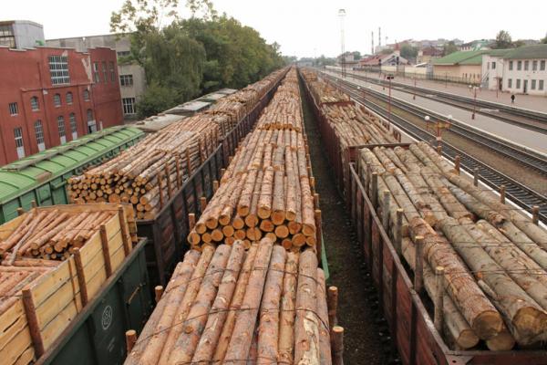 Госкомстат Узбекистана назвал четыре вида стройматериалов, импорт которых увеличился в разы