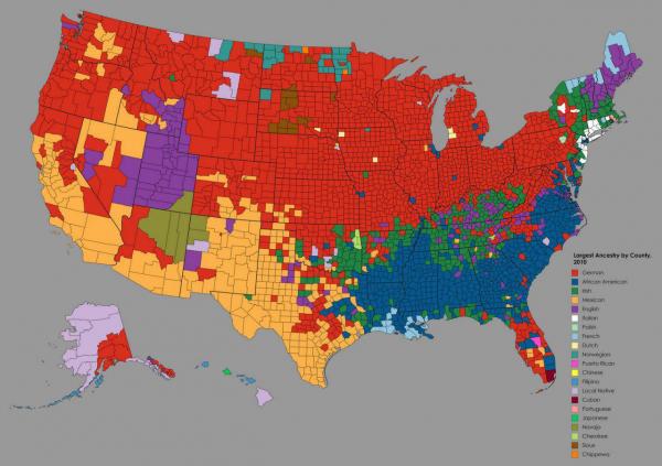 Карта рассказывает о самых крупных этнических группах, из которых происходят американцы