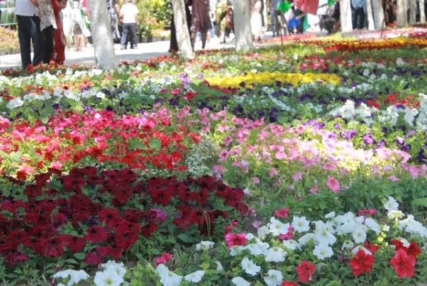 В городе цветов проходит фестиваль «Namangan Flowers-2019»