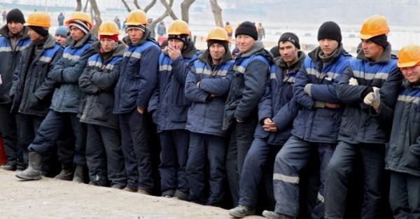 Где в России запретят работать мигрантам в 2020 году