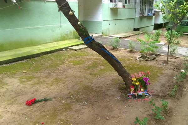 ГУВД рассказало о ходе расследования дела о наезде на подростков в Юнусабадском районе