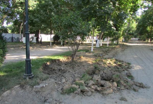 #нашБульвар: самаркандцы встали на защиту Университетского бульвара, который хотят превратить в заурядный парк